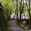 新緑の横蔵寺