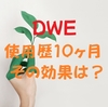 DWE使用歴10ヵ月、その効果は?