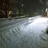 大雪・・・続く