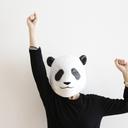 パンダとダンスパーティー