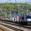 4月19日撮影 東海道線 大磯~二宮間 ① 貨物列車撮影 3075ㇾ 5094ㇾ