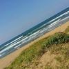 ひとりサーフィン。太陽の季節が待ち遠しい。気分を自然に任せてみるのもいい