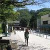勝俣部長の「高尾登山と健康体質作り」703・・・・本当に 困りまっせ