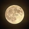 牡羊座満月ー秋の長夜と虫のこえー
