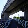 2016年11月4日(金)荒川河口パトロール Part 1 北風フォロー強風編