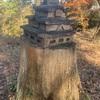 """いざ""""高取城""""へ‼(奈良県高取町)"""