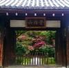 【京都 鹿王院】女性専用の宿坊!静寂を楽しむ大人の秋の過ごし方