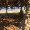 【ワーホリぶらり旅】ブリスベンの穴場スポット、レッドクリフ(サットンズ・ビーチ)に行ってみた。