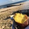 漂流物を燃やして焼き芋をした〜まつばらのサバイバル〜In三重大学らへんの海岸