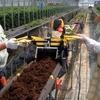 イチゴなどの高設栽培用耕耘機「高設ベッド耕耘機」