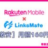 【料金160円〜】リンクスメイト×楽天モバイルのデュアルSIMを設定【iPhoneとAndroid】