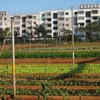 米国の地産地消ビジネスの市場規模は120億ドル。植物工場などの都市型農業も後押し