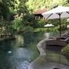 Bali島のspa💆🏻♀️