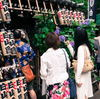 文京あじさい祭り(文京白山神社)