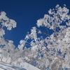 遠見尾根で雪山テント泊を満喫