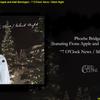 今夜のSong/Phoebe Bridgers (featuring Fiona Apple and Matt Berninger) - 7 O'Clock News / Silent Night