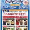 【11/30*12/07】イオン フローズンキャンペーン【レシ/web*はがき】