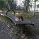 「こふねこ」の棲家らしい公園を大発見!