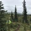 カナダ〜アラスカ旅191日目① ワンダーレイクキャンプとハイキング