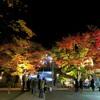 大山阿夫利神社の紅葉!大山ケーブルカーの詳細と紅葉の見頃の時期とアクセス
