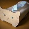 クローン猫の不思議 1