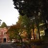 京都の穴場紅葉スポット【京都大学】の知られざる魅力