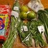 つくばで野菜を買う