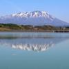新星、現る!!【大会12日目】いわて盛岡シティマラソン☆20201012