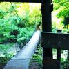 秋山郷 見倉橋のつりばし