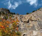 三ツ峠山登山ルート中級コース!紅葉の清八山~鷹ノ巣山~開運山~木無山(後編)