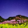 星景サルベージその29 束の間の楽園