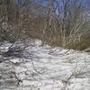 雪の季節もマジで終わりなことを悟る。