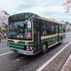 観桜会・春フェスタで見かけた車たち