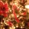 ローソンクリスマスチキン2016予約方法・早割り特典やお得なポイントまとめ
