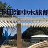 【どこよりもイルカと遊べる!!下田海中水族館】見学するポイントと大興奮の体験記