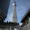 東京旅行①