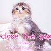 【週末英語#166】英語で「差を縮める」は「close the gap」