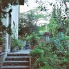 旅に出られない旅人はどうなってしまうのか<その21>「フィレンツェの庭のハーブに包まれたい」