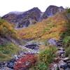 槍ヶ岳への道