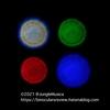 Swarovski NL Pure 10x42 焦点内外像  ( SLC 7x42 とも比較)