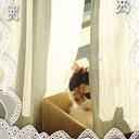 猫と一緒にルンルン在宅介護♬