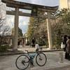 2018 恒例の京都 4