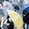 お願いだから雨の時は傘ではなくカッパ着てほしい理由