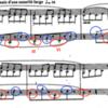 ラヴェル「亡き王女のためのパヴァーヌ」〜ピアノ曲 楽曲分析〜