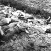 韓国人の思い出すべき保導連盟事件
