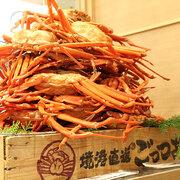 カニ料理の無限ループに大興奮…!カニ食べ放題が3,480円の銀座「ごっつお」で鳥取・境港直送の紅ズワイガニを食べまくった