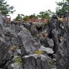 鬼押出し溶岩、「群馬県の石」に認定されました。
