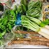 岡山野菜、入荷しました‼️