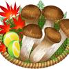松茸が生える場所の見つけ方!初心者でも松茸採りを成功させるコツ!