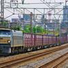6月14日撮影 東海道線 平塚~大磯間 貨物列車6本撮影① 5097ㇾ 1155ㇾ 5075ㇾ